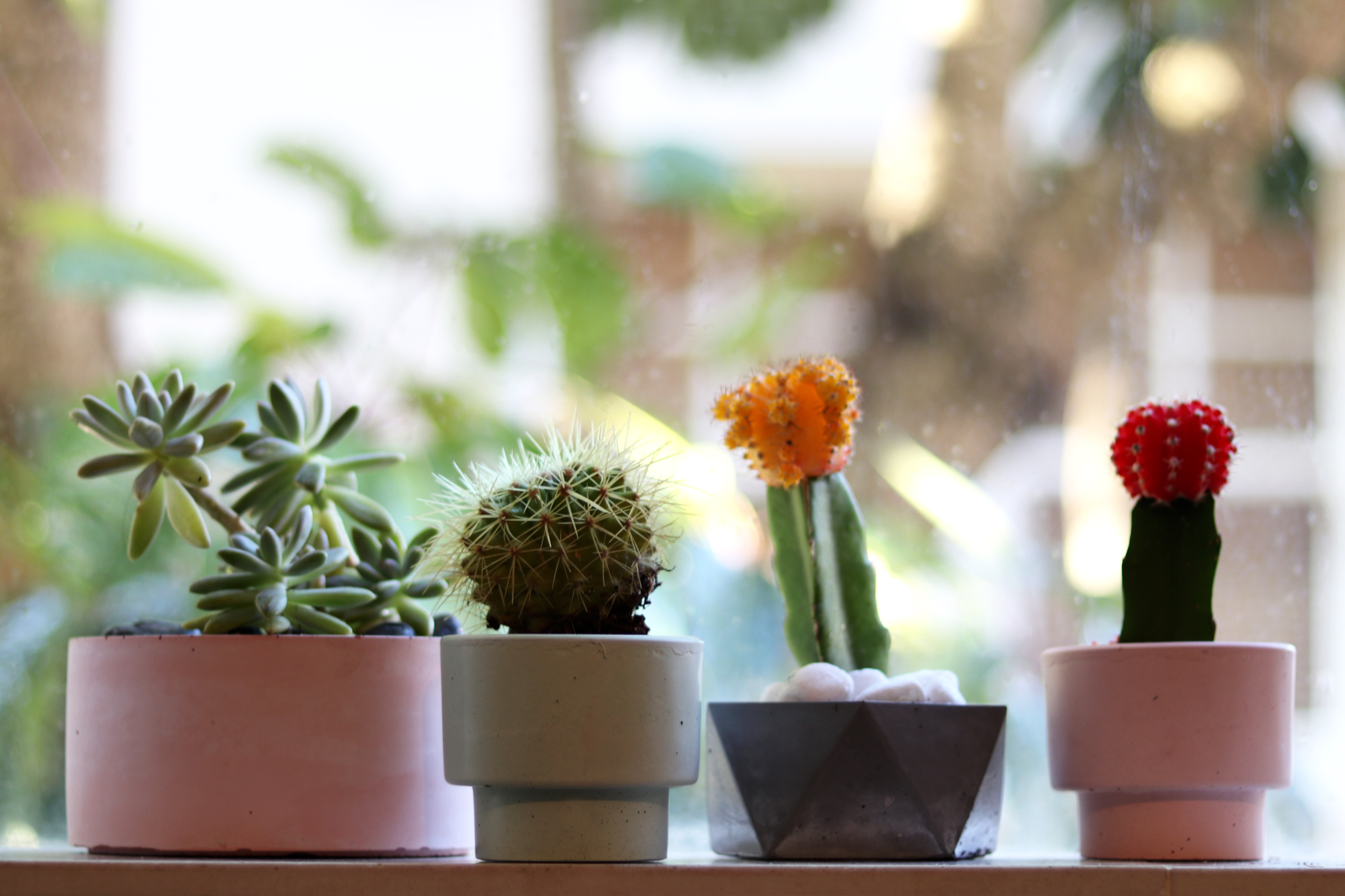 concretehomewares.com.au | by Andy - for better moods